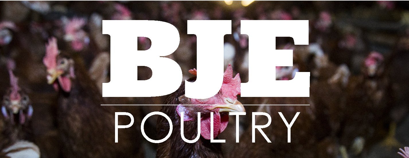 BJE Poultry Header1